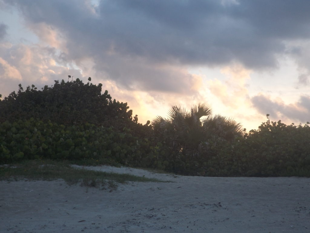 sunset behind the dunes